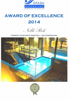 2014-SPASA-domestic-plunge-pool
