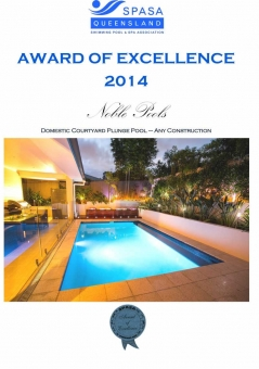 2014-SPASADomestic-Courtyard-Plunge-Pool–Any-Construction